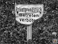 Sinn sucht Verstand © Lutz Griesbach_13